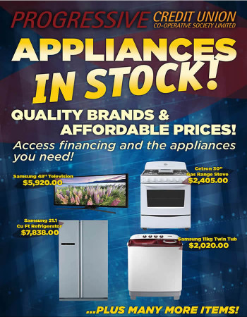 appliances flyer_use